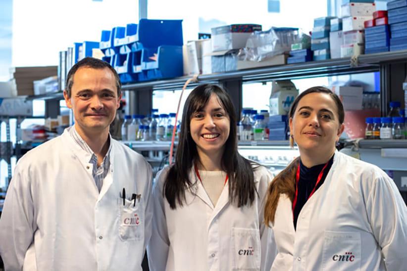 adiponectina-la-hormona-que-protege-a-las-mujeres-frente-al-cancer-de-higadoweb