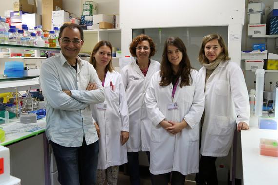 Nanomedicina-para-mejorar-la-respuesta-al-tratamiento-del-cancer-de-mama-y-colon_image_380