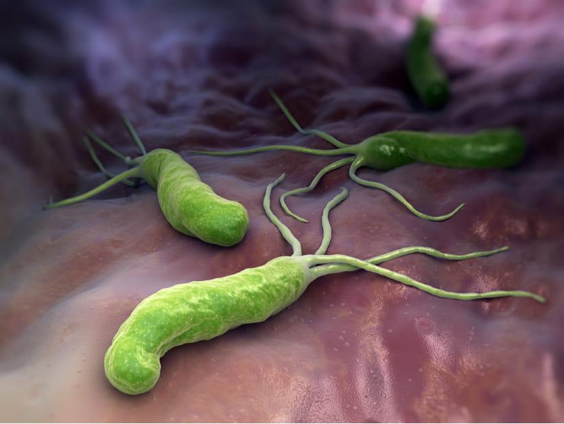 identifican-una-mucosa-que-oculta-el-cancer-de-estomago