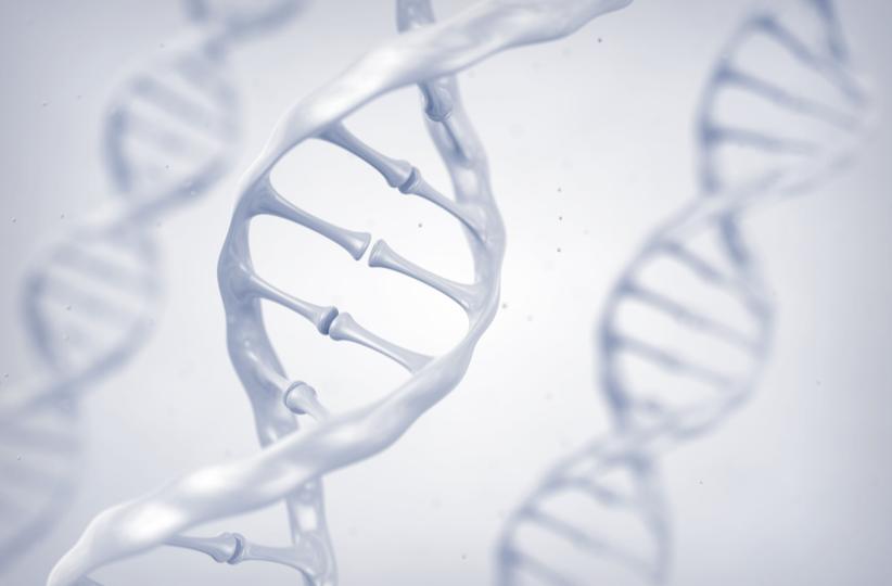 genes web