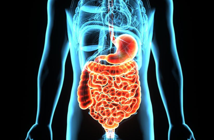 Tumor carcinoide gastrointestinal
